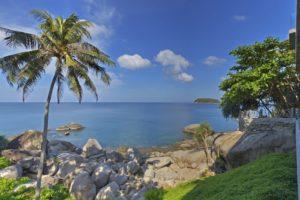 Private Path to Cove